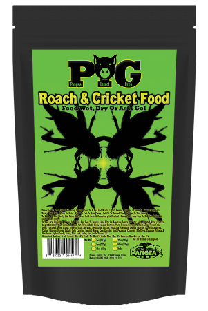 Pangea Insect Grub (PIG)
